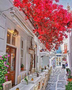 Εστιατόριο Μύκονος, εστιατόρια Μύκονος, ταβέρνα Μύκονος, ταβέρνες Μύκονος, φαγητό Μύκονος. Γαλλική κουζίνα Μύκονος, Ελληνική κουζίνα Μύκονος, Μεσογειακή κουζίνα Μύκονος, La Maison de Katrin